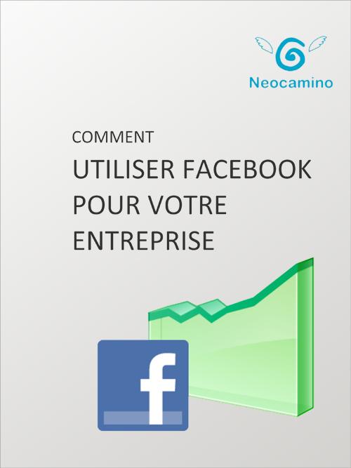 Facebook pour entreprise
